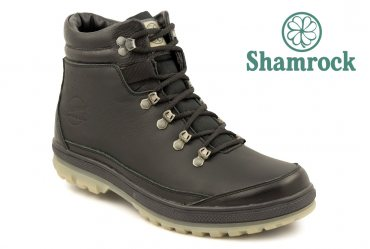 Shamrock 20.2