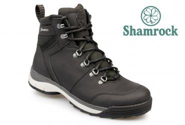 Shamrock 20.24
