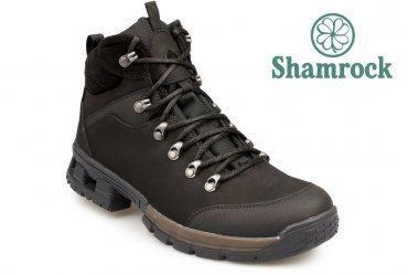 Shamrock 20.27