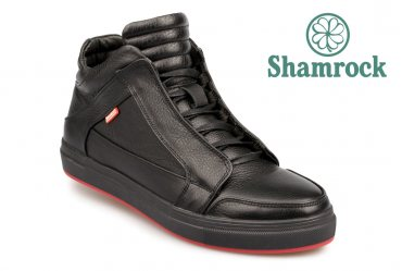 Shamrock 20.28