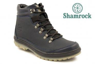 Shamrock 20.2 blue