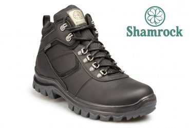 Shamrock 20.3
