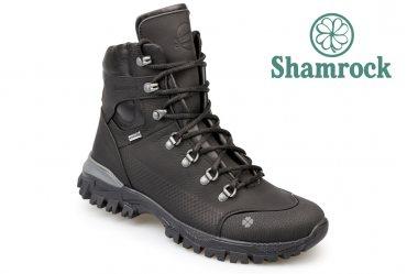 Shamrock 20.38