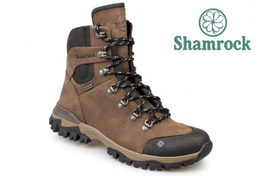 Shamrock 20.38 brown