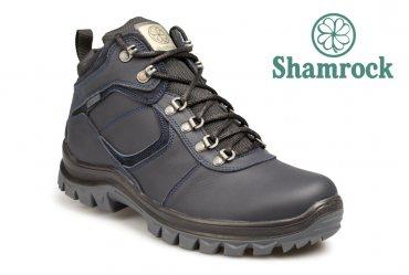 Shamrock 20.3 blue