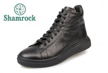 Shamrock 20.42