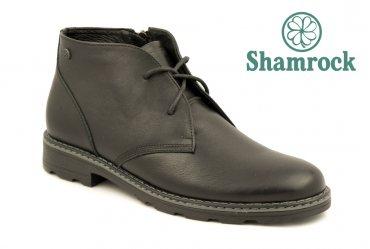 Shamrock 20.5