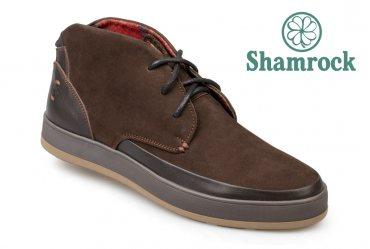 Shamrock 20.7 brown