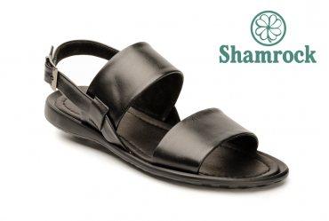 Shamrock 30.7