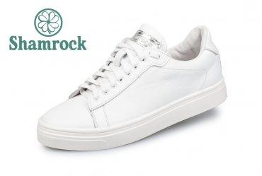 Shamrock 40.11 white