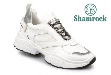 Shamrock 40.15 white