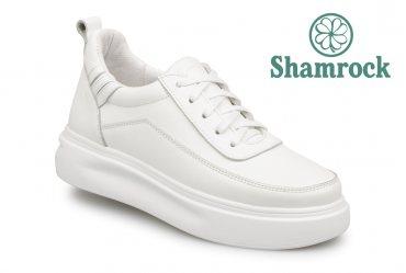 Shamrock 40.20 white